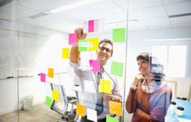 training project management