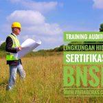 Training Auditor Lingkungan Hidup Sertifikasi BNSP